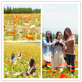 2014-05-02 12.08.07-1_副本.jpg