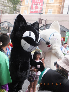 �K白猫.JPG